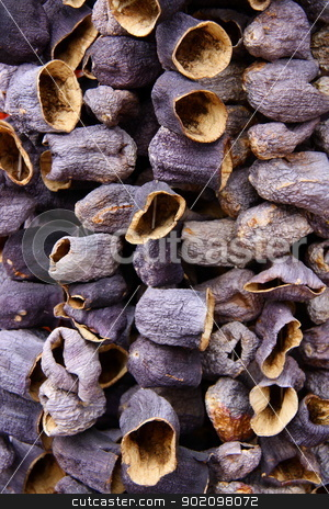  dry eggplants  on rope stock photo, dry eggplants on rope for cooking, its made in Turkey and shops sell these in bazaars by melih turhanlar