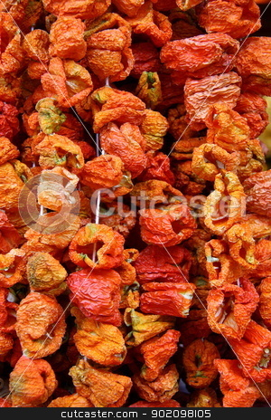 red dry peppers on rope stock photo, red dry peppers on rope for cooking, its made in Turkey and shops sell these in bazaars by melih turhanlar