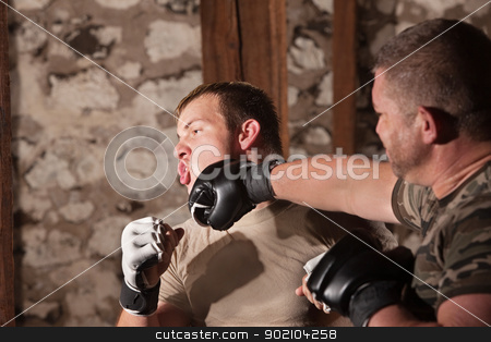 Two Mixed Martial Artists Sparring stock photo, Blond male fighter struck on chin by attacker by Scott Griessel
