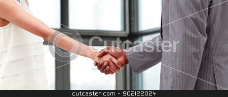 Portrait of a shaking hands stock photo, Portrait of a business shaking hands by Wavebreak Media