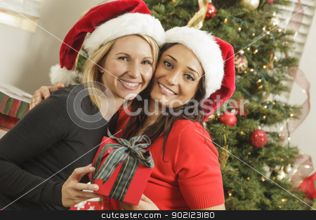 Young Mixed Race Girlfriends with Christmas Gift stock photo, Attractive Young Mixed Race Girlfriends with Christmas Gift Wearing Santa Hats Near the Tree. by Andy Dean