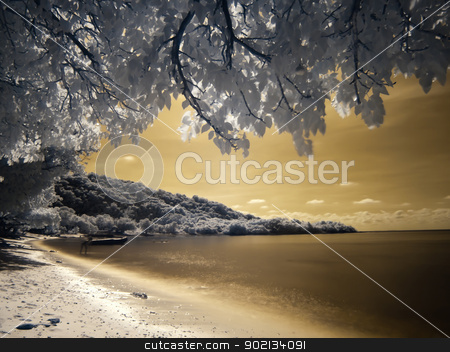 Beautiful beach in Ko Kham island stock photo, Beautiful beach in Ko Kham island photographed in near infrared light, Sattahip, Chon Buri, Thailand by Exsodus