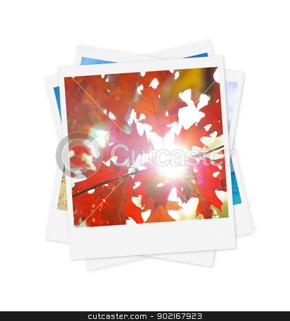photo  stock photo,  photo on a isolated white background  by Vitaliy Pakhnyushchyy