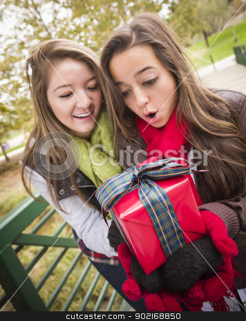 Mixed Race Women Having Gift Exchange stock photo, Two Attractive Mixed Race Women Having a Gift Exchange Outside. by Andy Dean