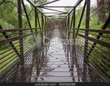 wet bike trail bridge stock photo, wet bike trail bridge over a flooding river, springtime by Marek Uliasz