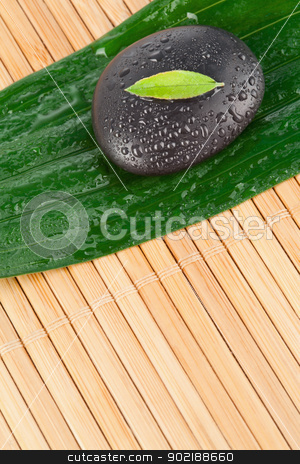 A small leaf on a black stone on a bigger leaf stock photo, A small leaf on a black stone on a bigger leaf by Wavebreak Media