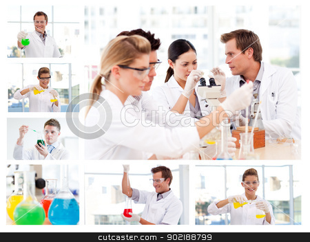 Collage of several scientists doing experiments stock photo, Collage of several scientists doing experiments in a lab by Wavebreak Media