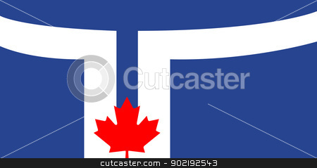Toronto city flag stock photo, Toronto city flag is official colors, Canada. by Martin Crowdy