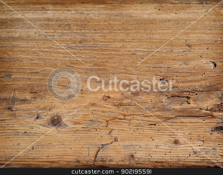 Old wood board stock photo, Photo of an old wood plank taken from a rotting barn. by © Ron Sumners