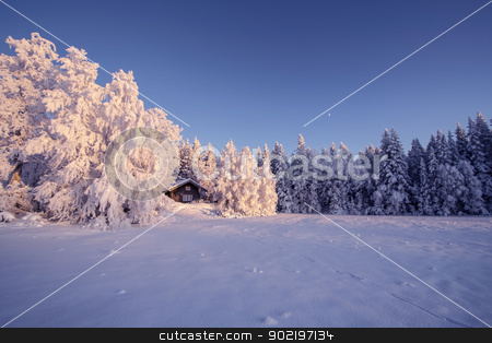 Winter Landscape stock photo, Beautiful winter landscape in Sweden by Ingvar Bjork