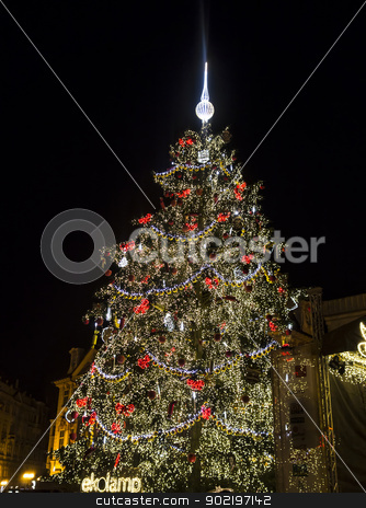 Christmas Tree stock photo, Christmas Tree in Prague Old Town  by Ingvar Bjork