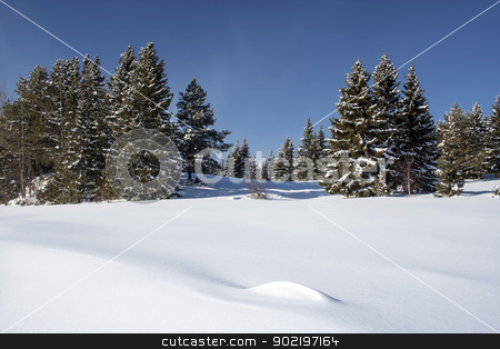Beautiful winter landscape stock photo, Beautiful winter landscape in Sweden  by Ingvar Bjork