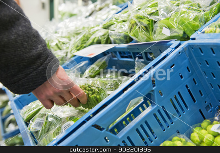 Fresh Vegetables stock photo, Hand, picking a cellophane packaging with fresh haricots verts from a blue crate inside the cooling of a large wholesale supermarket by Corepics VOF