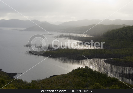 Environmental Damage stock photo, Dead trees lining the banks of lake gordon, flooded for a dam project, tasmanian wilderness. by Stephen Gibson