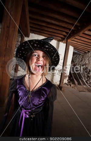 Screaming Young Witch stock photo, Screaming young female witch with hat and purple dress by Scott Griessel