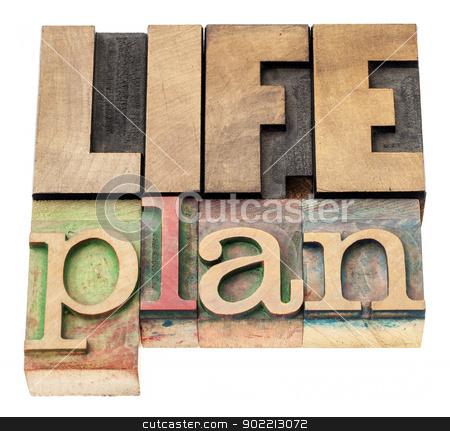 life plan in wood type stock photo, life plan - isolated text in vintage letterpress wood type printing blocks by Marek Uliasz