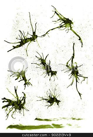Ink splashes stock photo, Dark green ink splashes on white background. by Homydesign