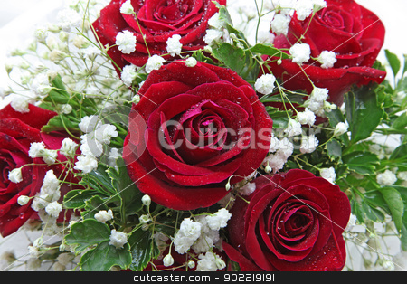 rose bouquet stock photo, closeup of rose bouquet isolated on white using in wedding or any greeting ceremony by Vichaya Kiatying-Angsulee