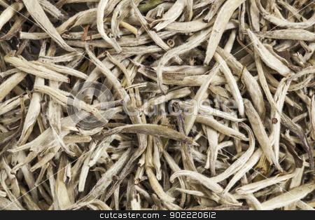 silver needle white tea stock photo, background texture of organic silver needle white tea by Marek Uliasz