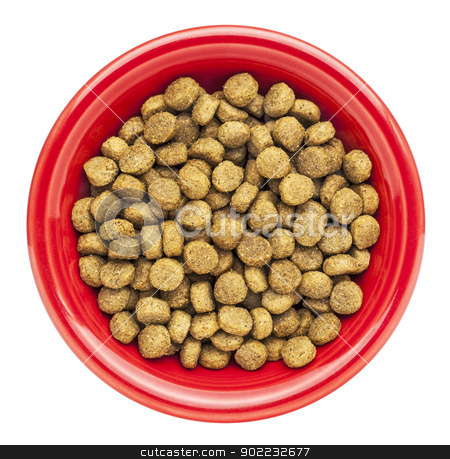 bowl of dry dog food stock photo, red bowl of dry dog food isolated on white by Marek Uliasz