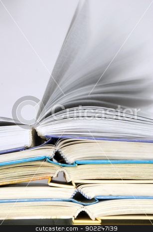 books  stock photo, Pile of books over grey by Vitaliy Pakhnyushchyy
