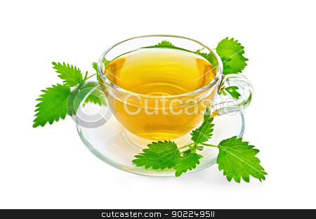 Herbal tea with nettles stock photo, Herbal tea in a glass cup and saucer, three twig nettle isolated on a white background by rezkrr