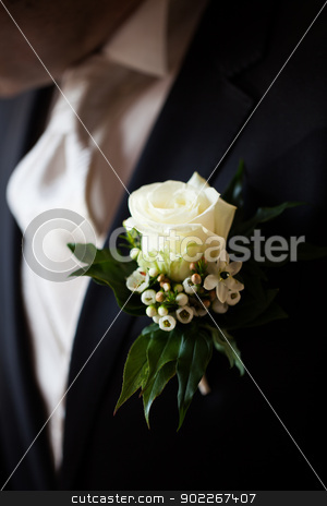 rose on jacket stock photo, white rose on jacket by Axel Lauer