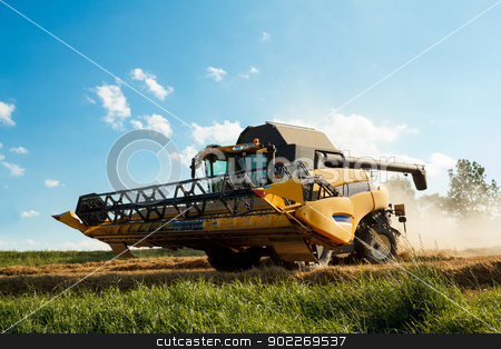 Yellov combine on field harvesting gold wheat stock photo, Yellov combine on field harvesting wheat in sunny weather by Artush