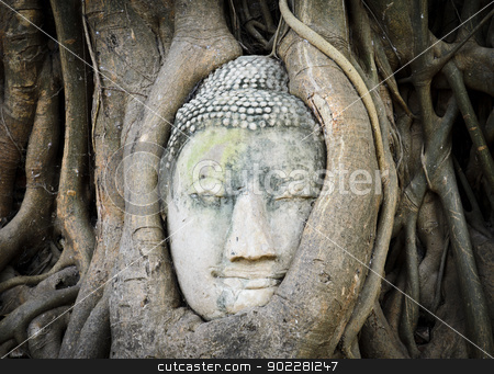 Head of Buddha in a tree trunk stock photo, Head of Buddha in a tree trunk in Wat Mahathat, Ayutthaya,Thailand by boonsom