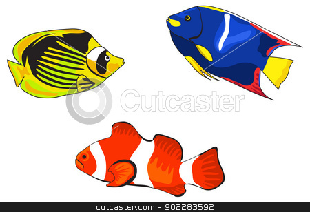 Tropical Fish stock vector clipart, Tropical fish illustrations on white background by dayzeren