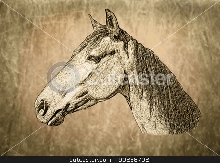 Sepia Toned Horse Portrait stock photo, Sepia Toned Horse Portrait on Textured Background by Snap2Art