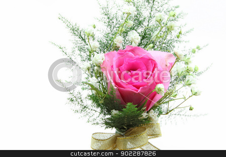 pink rose corsage stock photo, pink rose corsage by Vichaya Kiatying-Angsulee