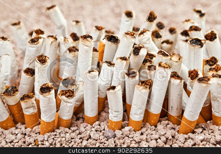 Wall of cigarettes stock photo, Ashtray full of smoked cigarettes in the sand disposed as a wall  by Dario Rota