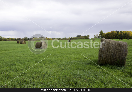 Farm field with bails of hay stock photo, Farm field with bails of hay by Click Images