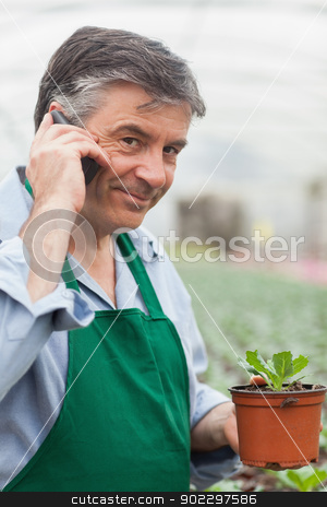 Man calling and holding a seedling stock photo, Man calling and holding a seedling working in a greenhouse by Wavebreak Media