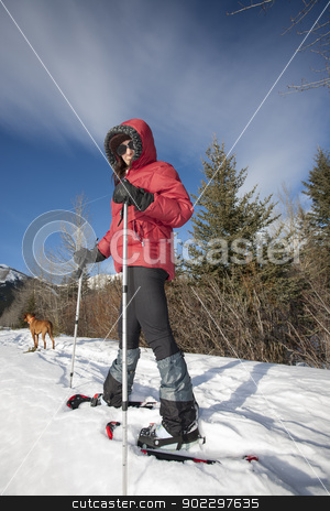 snow shoeing  stock photo, snow shoeing with the dog  by Barna Tanko