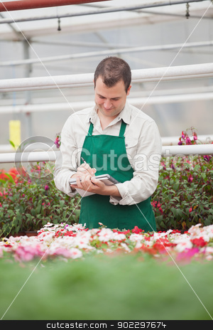 Man taking notes in greenhouse stock photo, Man taking notes in greenhouse in garden center by Wavebreak Media
