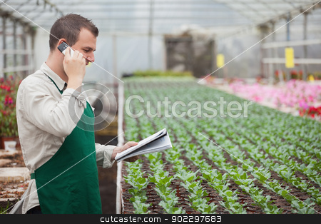 Gardener calling and taking notes in greenhouse stock photo, Gardener calling and taking notes for stocktaking in greenhouse nursery by Wavebreak Media