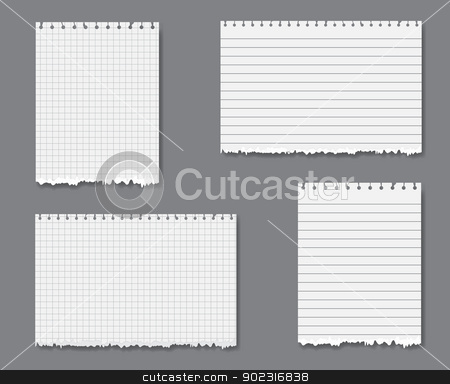 Vector set with lined and graph paper stock vector clipart, Vector set with sheets of loose lined and graph leaf paper with torn lower edge by Iryna Rasko