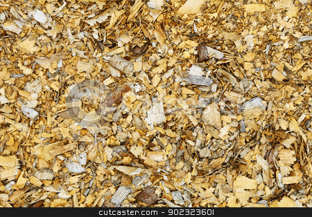Natural background - old wood shavings stock photo, Natural background - an old wood brown shavings by Alexey Romanov