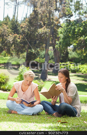 Friends reading their books in the park stock photo, Female friends reading their books in the park by Wavebreak Media