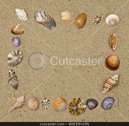 Shape from seashells on beach stock photo, Shape from seashells on beach by vaeenma