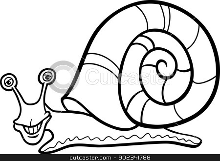Mollusks Pages Printable Coloring