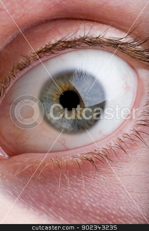 Macro of a blue eye stock photo, Detailed macro of a blue male eye by Mirko Pernjakovic