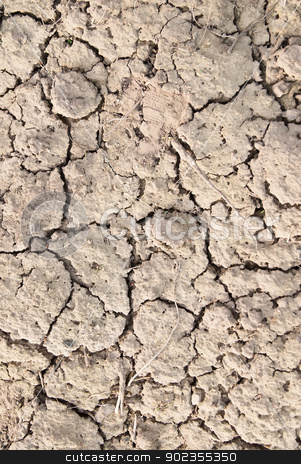 Dry land, dry scaly ground stock photo, Image of the earth dried up in drought by Aikon