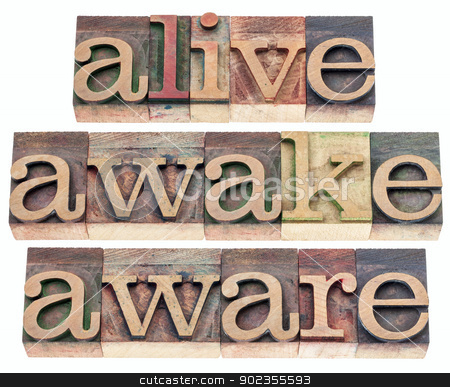 alive, awake, aware  stock photo, alive, awake, aware  words - isolated text in vintage letterpress wood type printing blocks by Marek Uliasz