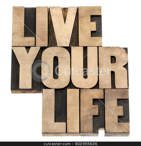 live your life in wood type stock photo, live your life phrase - isolated text in vintage letterpress wood type printing blocks by Marek Uliasz