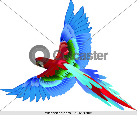 Parrot Flying stock vector clipart, Beautiful detailed colorful parrot vector by Bogdan