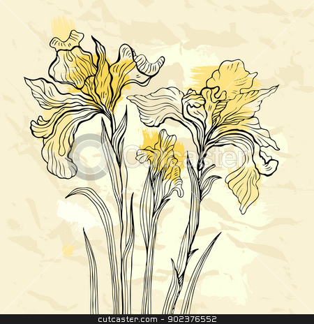 Iris flower vector illustration. stock photo, Floral background. Hand drawn flowers. Vector illustration. by Katyau