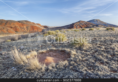 ant nest sand cone stock photo, ant nest sand cone in high prairie surrounded by redstone mountains - Red Mountain Open Space near Fort Collins, Colorado, winter with dry grass and traces of snow by Marek Uliasz